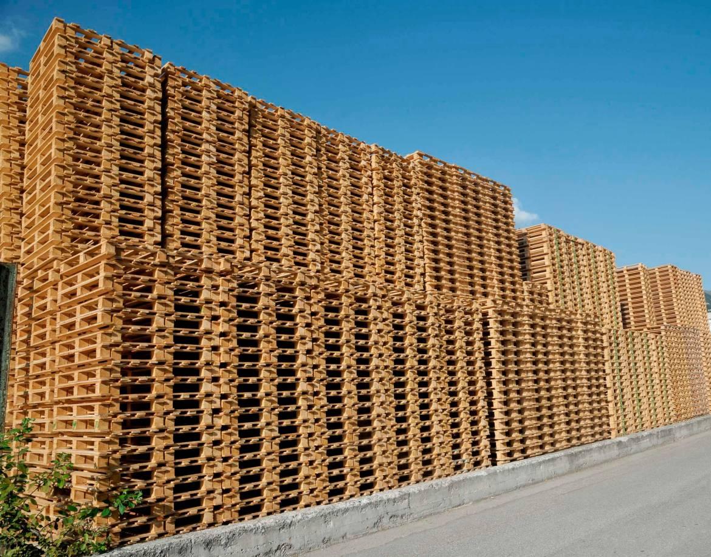 Palettex-Paletten-Holzpaletten-Einwegpaletten_web_fastscharf.jpg