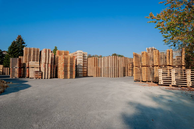 Palettex-Paletten-Holzpaletten-Einwegpaletten-Transportpaletten-Europaletten-ISPM15-006.jpg